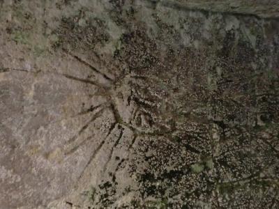 洞窟教会太陽の絵