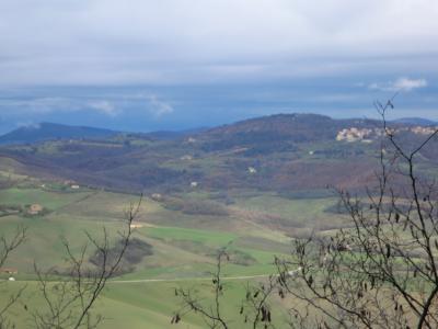 モンテプルチャーノ