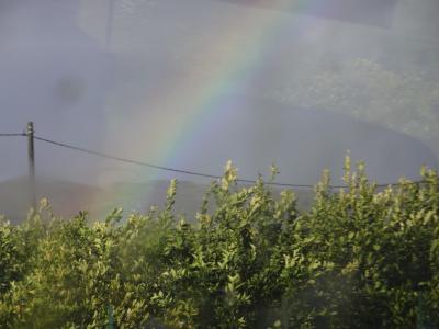 カルタジローネ 虹